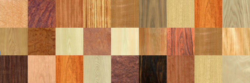 世界の木材